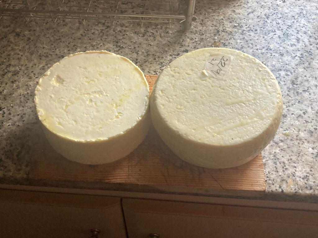 Hacer queso maduro